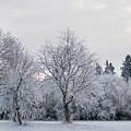 Frosty Park by Esko Lindell