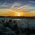 Frosty Sunrise by Stephen Jenkins