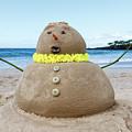 Frosty The Sandman by Denise Bird