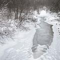 Frozen Brook by Black Crow Landing