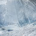 Frozen Bubble by Dale Kincaid