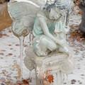 Frozen Fairy by Brenda Ackerman