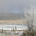 Frozen Fog Ranch Scene by Judithann O'Toole