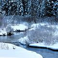 Frozen In Time by William Tasker