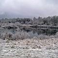 Frozen by Jimmie Blacker