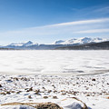 Frozen Lake by Hector Maldonado