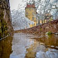 Frozen Moat At Fonthill by Michael Brooks