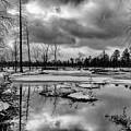 Frozen Mullica River by Louis Dallara