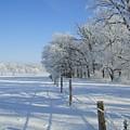 Frozen Mystery by Jessica Yudis