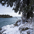 Frozen View Of Ellingson Island by Donna Crider