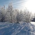 Frozen Views 3 by Jouko Lehto