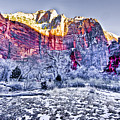 Frozen Zion by Ches Black