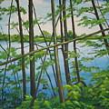 Fruit Ridge Ponds by Lara Leitch