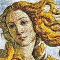 Fruity Venus I Am So Sorry Mr Boticelli by Georgiana Romanovna