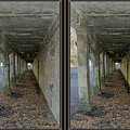 Ft. Howard Pk- Tunnel Effect - 3d Stereo X-view by Brian Wallace