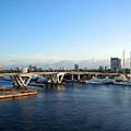 Ft. Lauderdale, Florida by Anthony Dezenzio