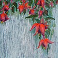 Fuchsia On The Fence by Peggy King