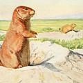 Fuertes, Louis Agassiz 1874-1927 - Burgess Animal Book For Children 1920 Prairie Dog by Louis Agassiz Fuertes