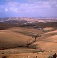 Fuerteventura I by Flavia Westerwelle
