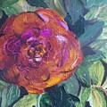 Full Bloom by Pamela Wilson