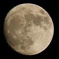 Full Moon 2016 by Maria Reverberi