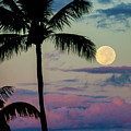 Full Moon And Palm Trees by Anthony Jones