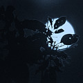 Full Moon And Tree by Totto Ponce