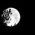 Full Moon On La Veta Pass by Jim Garrison
