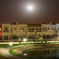 Full Moon Over Springs 10 by Lene Pieters