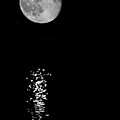 Full Moon Reflections by Jemmy Archer