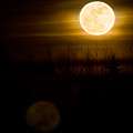 Full Moon Rise by Naman Imagery