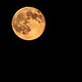 Full Moon by Robert Bales