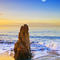Full Moon Setting by Greg Clure