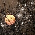 Full Moon Starry Night by Marianna Mills