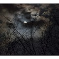 Full Moon With Clouds by Rebecca Pavelka