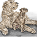 Full Of Promise - Irish Wolfhound Dog Print Color Tinted by Kelli Swan