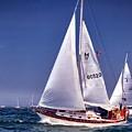 Full Sail Ahead by Bruce Gannon