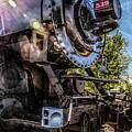 Full Steam Ahead by Lori Figueroa