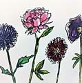 Four Flowers  by Navya Saini