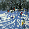 Fun In The Snow by Andrew Macara