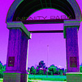 Fun Times At Infinity Park by Jessica Harrington