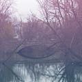 Funky Bridge  by Brandi Nierman