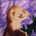 Funny Ferret by Valenteana J Chilsted
