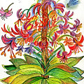 Funny Flowers On Green Plant by Julie Richman