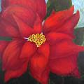 Funny Poinsettia by Marsha McAlexander
