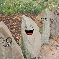 Funny Rocks by Samantha Joseph