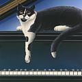 Fur Neil - Cat On Piano by Carol Wilson