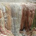 Furnas Hot Springs by Gaspar Avila