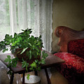 Furniture - Plant - Ivy In A Window  by Mike Savad
