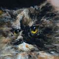 Furry 2 by Valeriy Mavlo